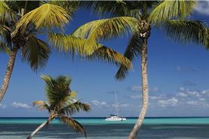Excursión hasta la Isla Saona (Copy)